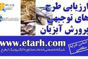 تهیه طرح توجیهی پرورش ماهی قزل آلا
