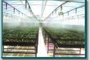 گلخانه های تحقیقاتی * نورصنعت فردوس