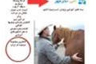 بسته آموزشی پرورش اسب و سوارکاری