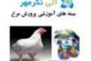 بسته آموزشی پرورش مرغ