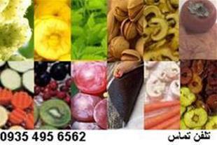 خشک کن انواع میوه واجیل