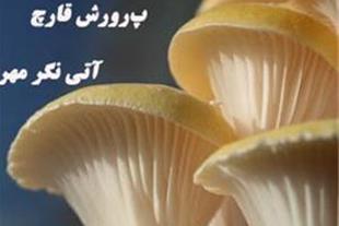 بسته کامل آموزشی پرورش قارچ