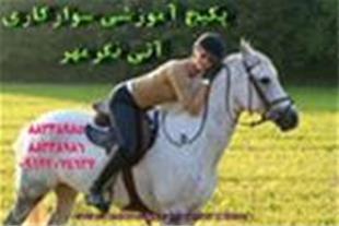 مجموعه آموزش پرورش اسب و سوارکاری