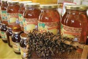 عسل طبیعی سراب (فروش عمده)