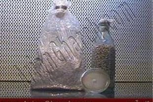 فروش بذر قارچ خوراکی ، قیمت بذر قارچ صدفی دکمه ای