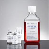 خط تولید آنتی بیوتیک، آنتی بادی، فرآورده های خونی