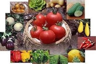 مواد غذایی ضروری گیاه -1 ( ریز مغذیها )
