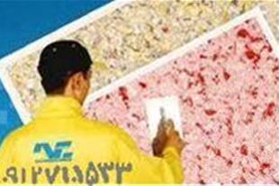 کمترین قیمت با چک اقسط(نقاشی گلستان- مجید)