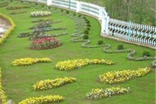 طراحی واجرای روف گاردن(باغ پشت بامی)، آبنما،آلاچیق