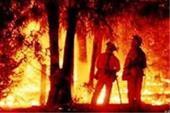 """بیمه آتش سوزی  مسکونی """" تجاری """" صنعتی"""