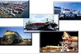 صادرات و واردات ، ترخیص کالا شرکت رایا پارس آمادی