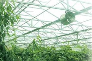 فن سیرکوله  و فن اگزاست-لوازم گلخانه