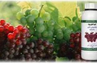 تولید کننده کودهای ترکیبی مایع وجامد کشاورزی(بوته)