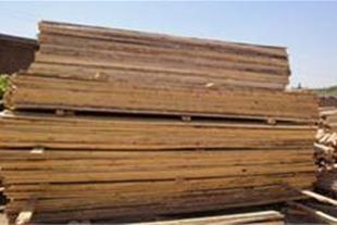 واردات و توزیع چوب وتخته نراد روسی