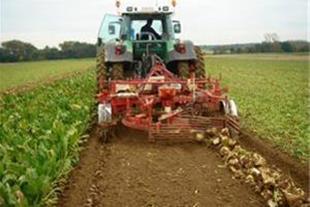 ماشین الات برداشت چغندر  beet harvesters