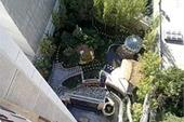 مشاور و مجری محیط زیست گیاه ایران- فضای سبز