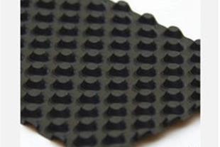 ورق زهکشی( Drainage Plate) محصول شرکت ژئوپلاس
