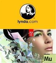 آموزش کامل و کاربردی طراحی وب سایت بدون نیاز