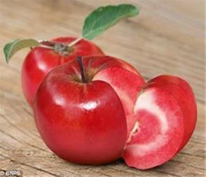 سیب توسرخ
