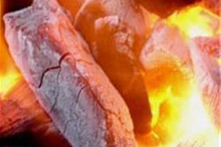 تولید و پخش عمده انواع ذغال