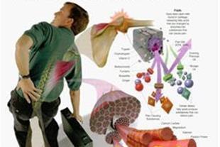 درمان دردها و گرفتگی عضلات