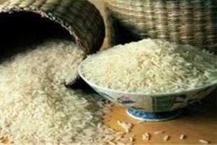 فروش مستقیم برنج تایلندی و اروگوئه