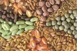 بذر کود سم کشاورزی