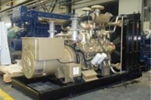 موتور ژنراتور گاز سوز دوسان-موتور ژنراتور Doosan