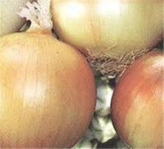 بذر پیاز زرد شرکت سیب سبز - 1