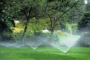 اجرای سیستم آبیاری قطره ای و بارانی