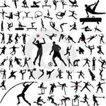 تدریس رشته های ورزشی