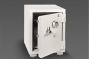گاوصندوق مدلذبذ-685