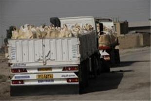 صادرات نمک به عراق ، افغانستان و آسیای میانه