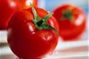 گوجه فرنگی کنیون و سه حلقه ps