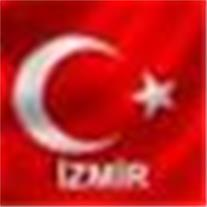 زبان ترکی استانبولی ، آموزش زبان ترکی
