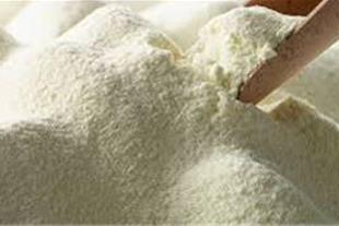 فروش شیرخشک صنعتی اسکیم و پرچرب-انواع پودر آب پنیر