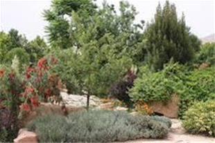 فروش باغ با مساحت 1000 متر در صوفیان