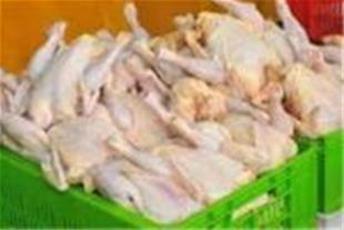 تولید انواع سبد میوه سبد مرغ سبد ماهی