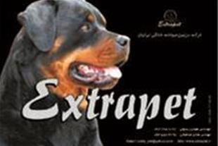 خرید و فروش انواع نژادهای سگ در مجموعه ای بینظیر ز