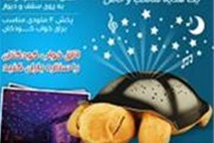 خرید اینترنتی چراغ خواب لاک پشتی موزیکال Shelman