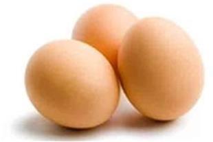 فروش تخم مرغ خوراکی ( رسمی )