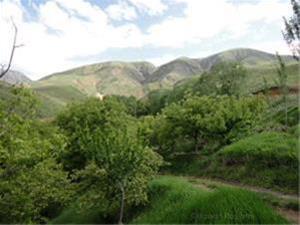 فروش یک قطعه زمین ویلایی1000متر مربع در صوفیان - 1