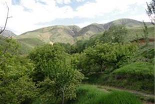 فروش یک قطعه زمین ویلایی1000متر مربع در صوفیان