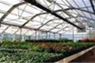 طرحهای توجیهی فنی و اقتصادی احداث انواع گلخانه