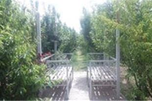 2000متر باغ بسیارشیک در شهریار  کد:415