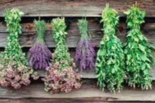 خرید و فروش سبزیجات خشک و گیاهان دارویی - 1