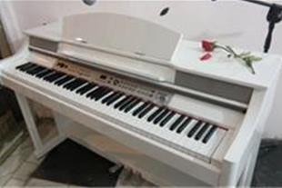 خرید ارگ و پیانو شما