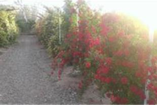 فروش باغ بسیار زیبا با امکانات کامل در جاده جوپار