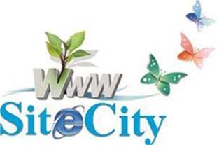 طراحی سایت و تبلیغات با قیمت مناسب