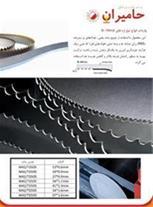 شرکت تجارت بین المللی فولاد حامیران